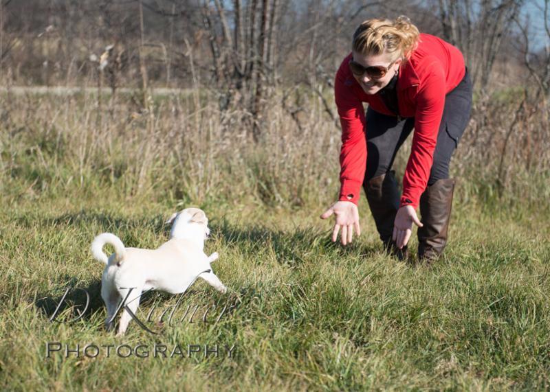 Positive Canine Dog Training Montreal