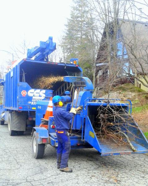 Faites appel aux professionnels en déchiquetage chez CCS Horticole et dites bon débarras à cet amoncellement de branches coupées!