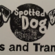 Spotted Dog Trips and Transport - Pet Transporting - 403-848-4539