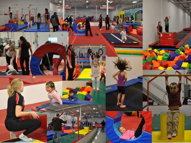 Glendon Gymnastics Opening Hours 235 Ardelt Ave