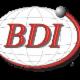 BDI Canada - Roulements, coussinets et paliers - 418-529-9374