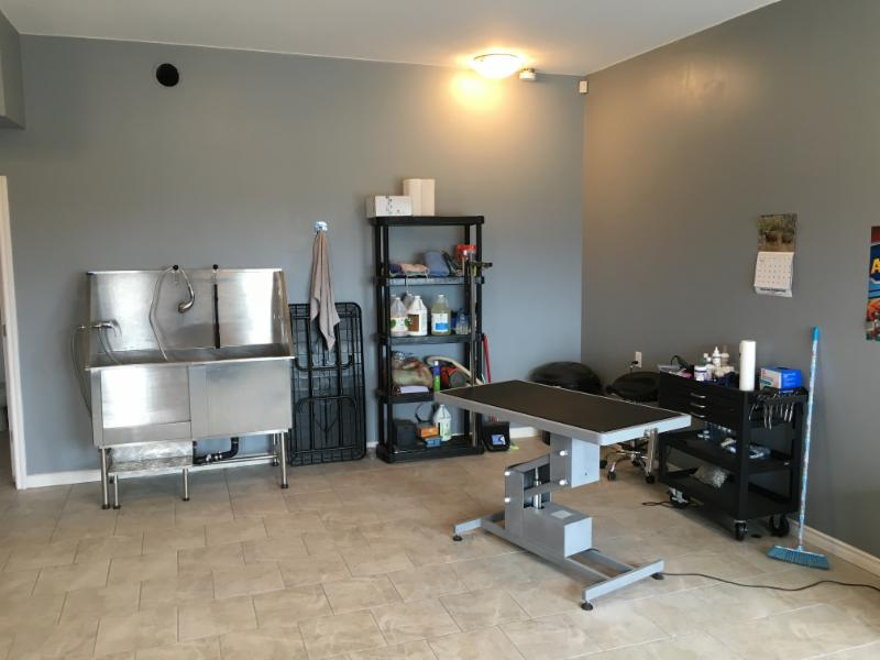 Spa for paws pet grooming oromocto nb 299 restigouche for 5 paws hotel salon