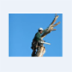 Saskatoon Tree Service - Service d'entretien d'arbres - 3062805522