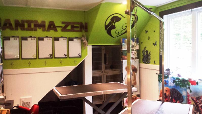 Anima zen toilettage et garderie pour chiens et chats for Salon toilettage zen attitude