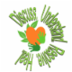 H.E.A.L. Holistic Counselling - Services et centres de santé mentale - 306-480-6651