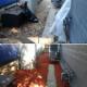 View T-Mac's Lawn Care & Snow Removal's Winnipeg profile
