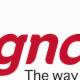 Signarama Ottawa East - Enseignes - 613-695-7446