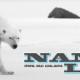 Nanuq Law - Personal Injury Lawyers - 778-433-5297