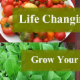 Life Changing Health Coach - Exercise, Health & Fitness Trainings & Gyms - 416-779-6019