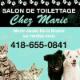 Salon de Toilettage Chez Marie - Toilettage et tonte d'animaux domestiques - 418-655-0841