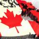Explore Canada Immigration Services - Conseillers en immigration et en naturalisation - 905-608-8803