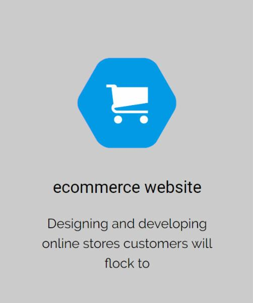 ecommerce website          Designing and developing online stores customers will flock towards.     WordPress Website          We build in WordPress website platform, which is the world¿s most popular content management system