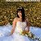 La Petite Jaune Fleur Ltd - Florists & Flower Shops - 4033400773